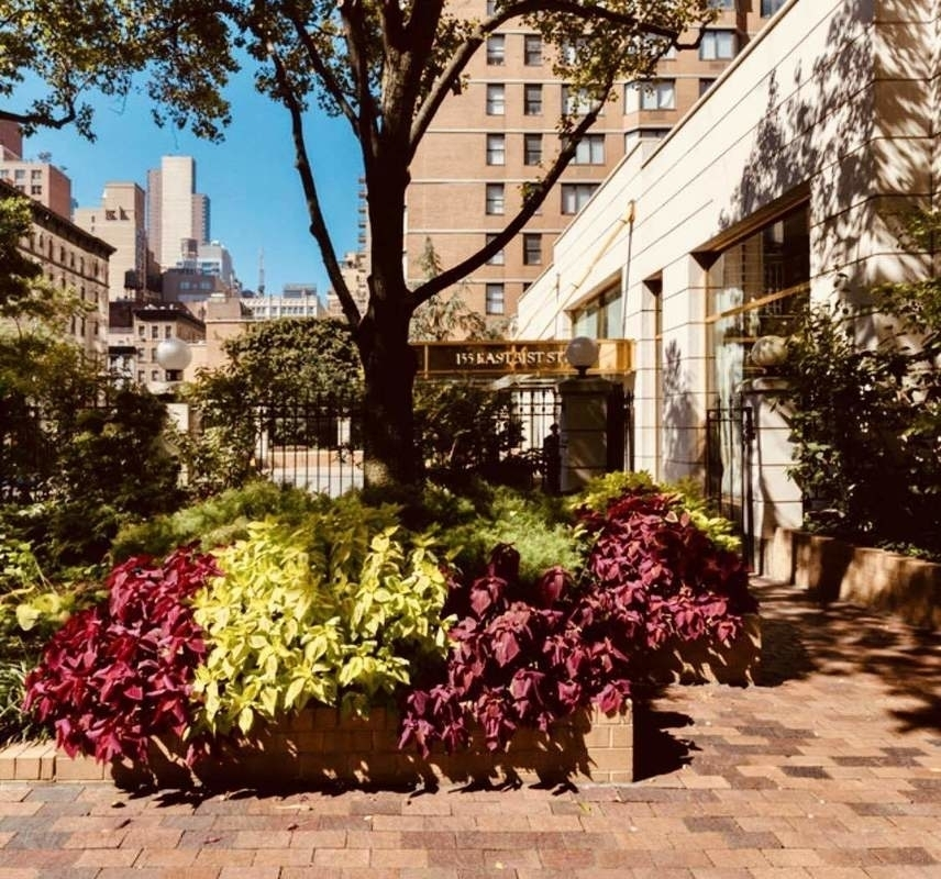East 31st Street - Photo 8