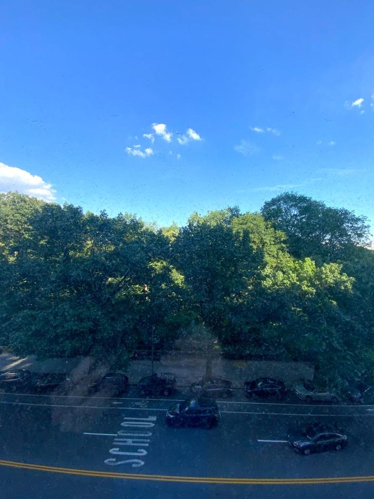 315 Central Park West - Photo 4