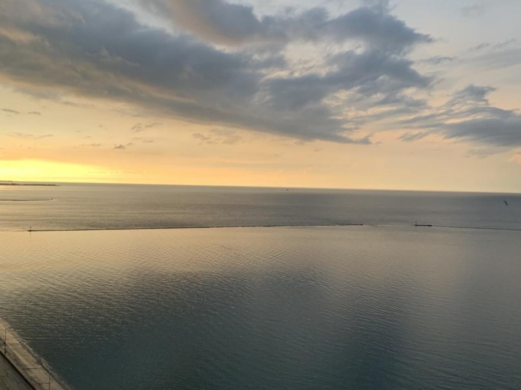 600 North Lake Shore Drive - Photo 31