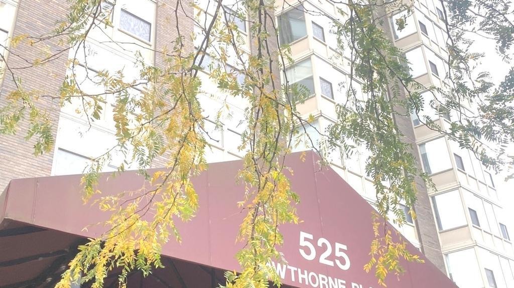 525 West Hawthorne Place - Photo 0