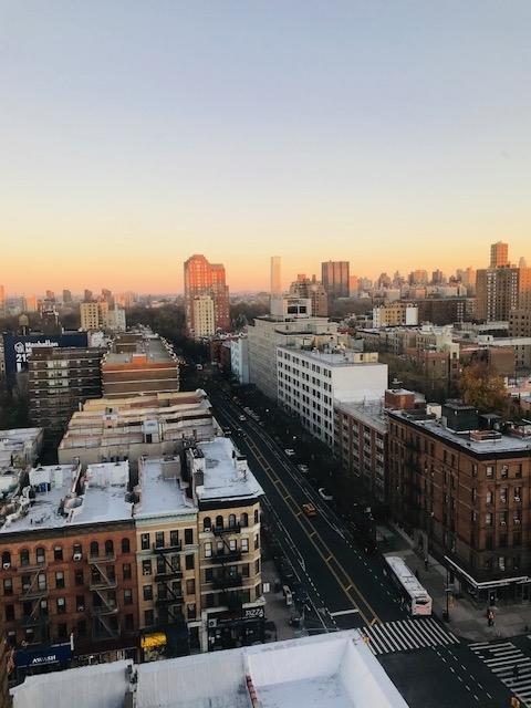207 West 106th Street - Photo 6