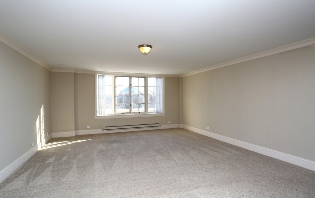 2300 North Lincoln Park West - Photo 4