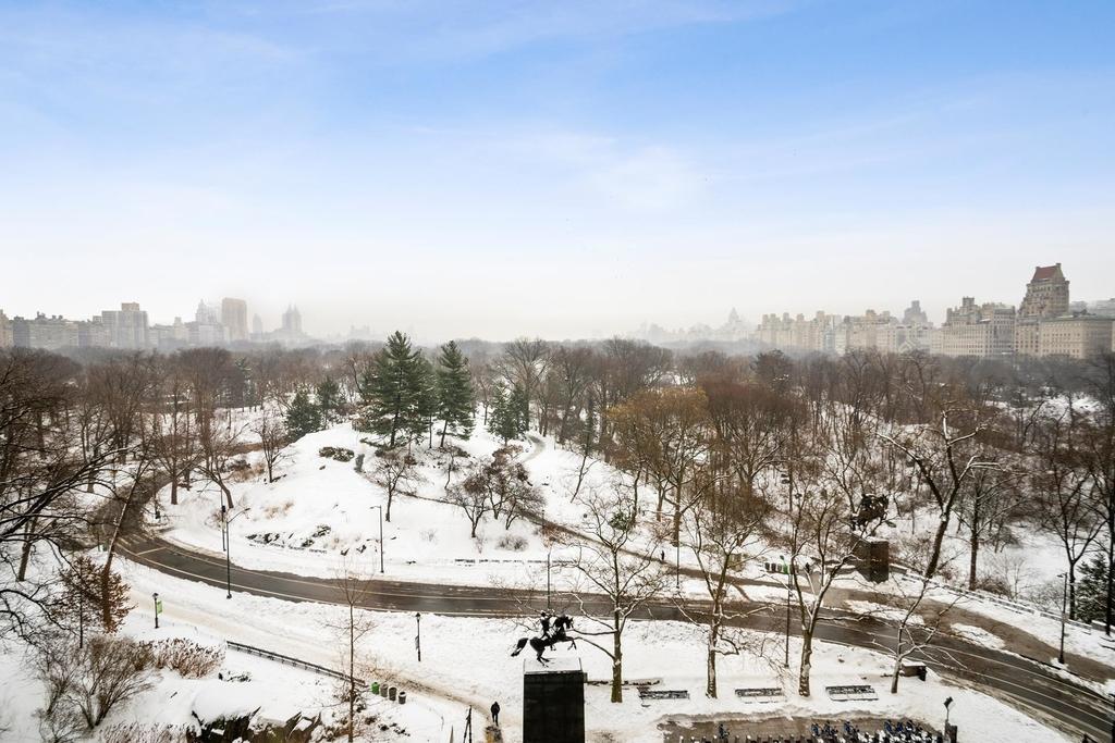 106  Central Park S - Photo 16