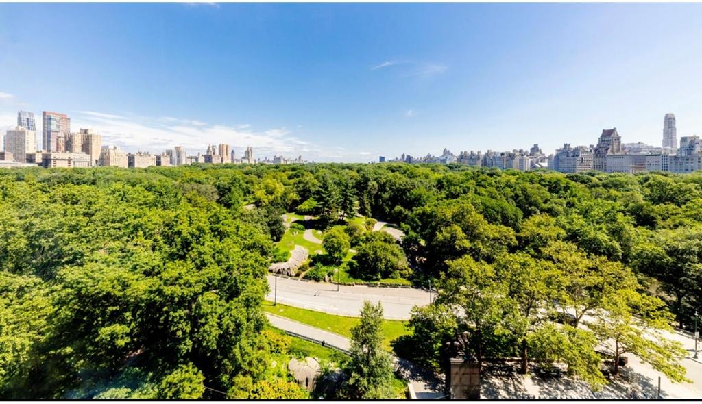 106  Central Park S - Photo 6