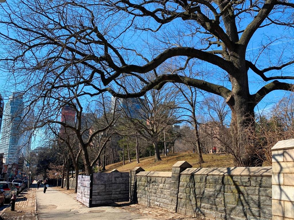 Fort Greene Park - Photo 11