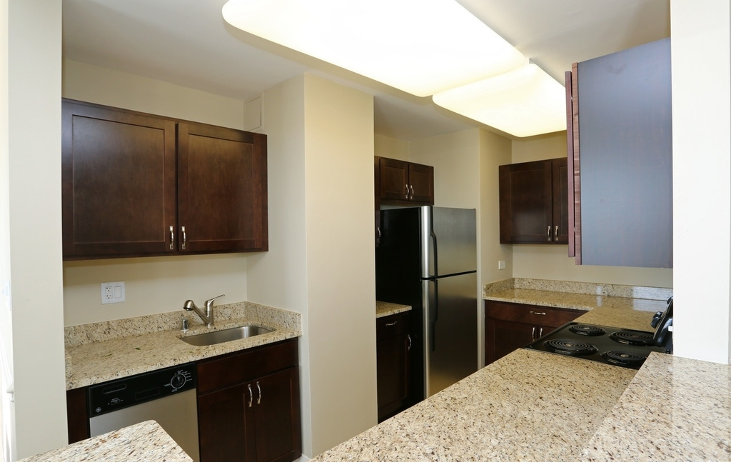 2300 North Lincoln Park West - Photo 1
