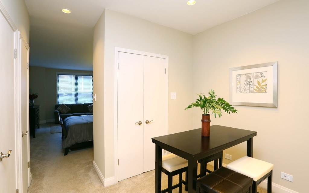 2300 North Lincoln Park West - Photo 0
