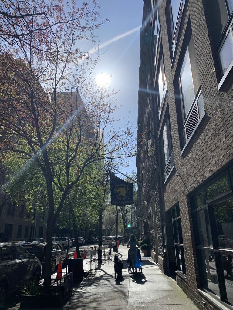 48 West 68th Street - Photo 8