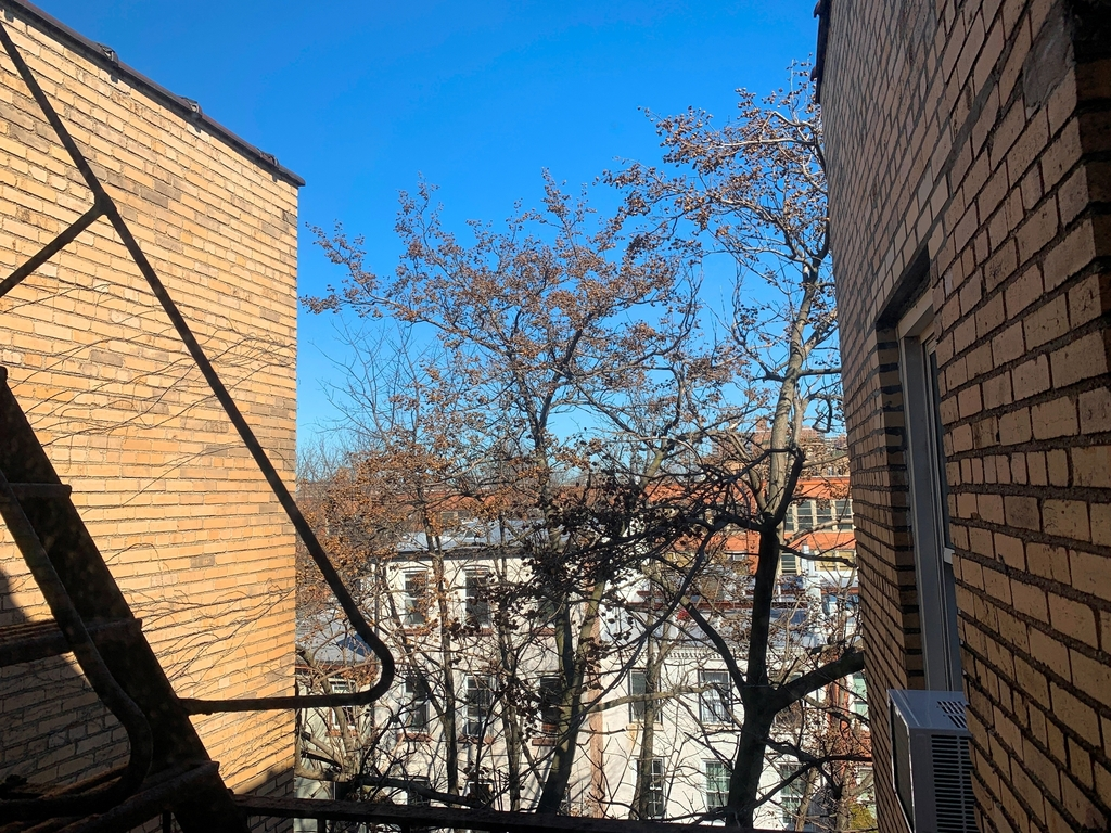 Cumberland Street/Fort Greene Park - Photo 2