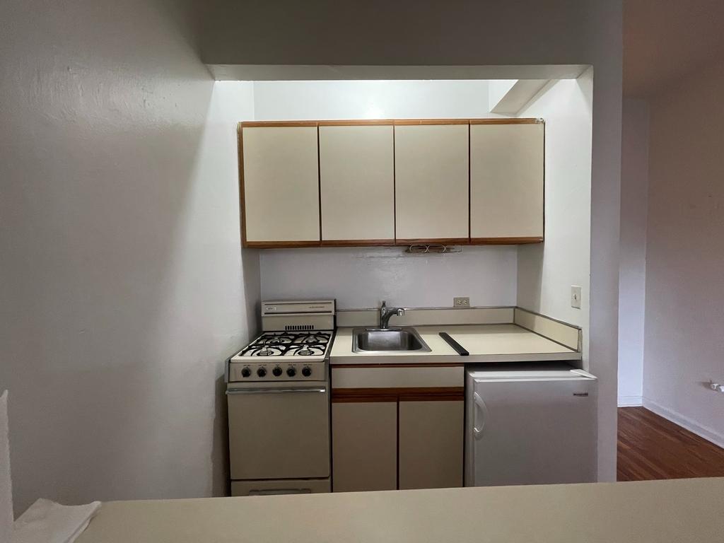 448 East 84th Street - Photo 4