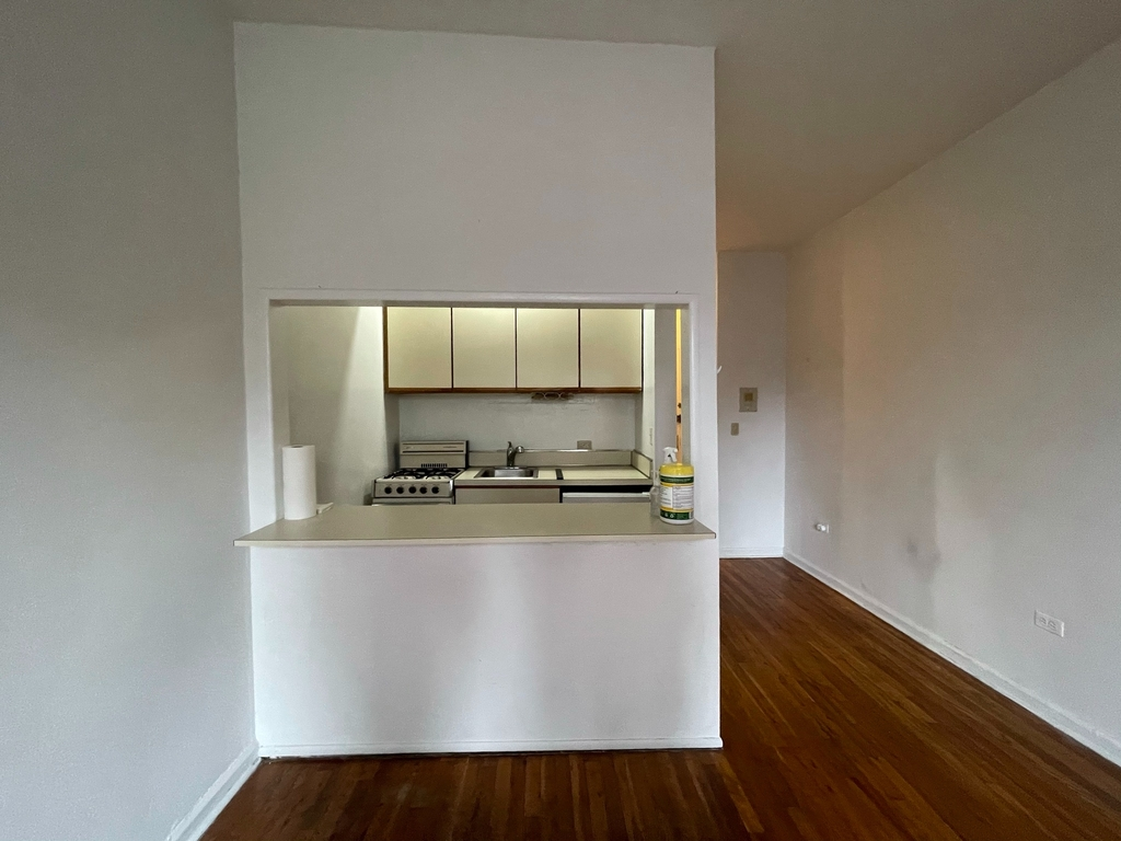 448 East 84th Street - Photo 3