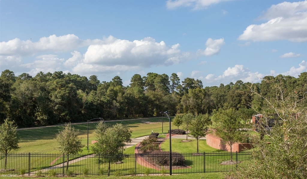 25120 Panther Bend Ct The Woodlands - Photo 3