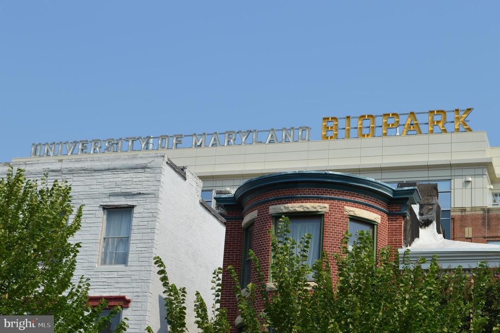 839 Hollins Street - Photo 35