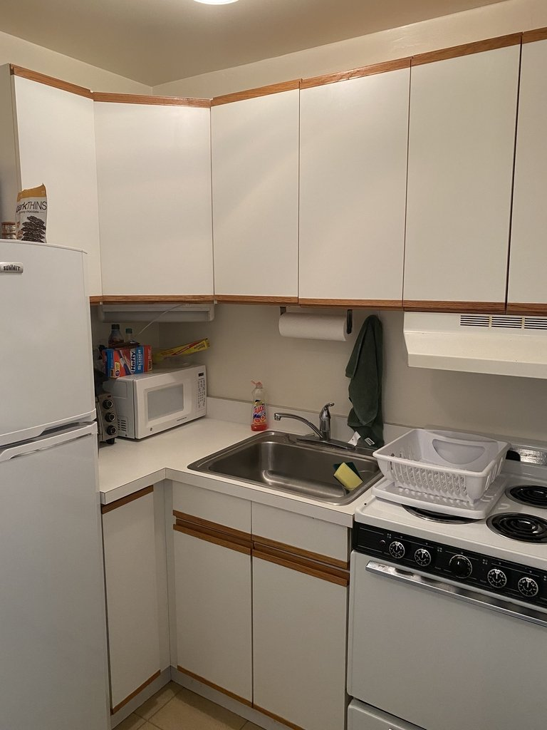524 West 50th Street 2d - Photo 4