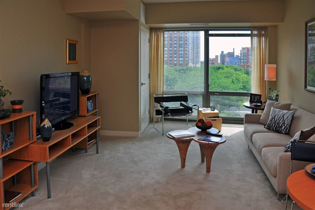 3 Bedrooms, South Loop Rental in Chicago, IL for $3,500 - Photo 1