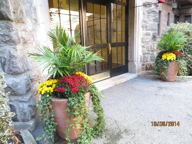 1 Bedroom, Pelham Parkway Rental in NYC for $1,426 - Photo 1