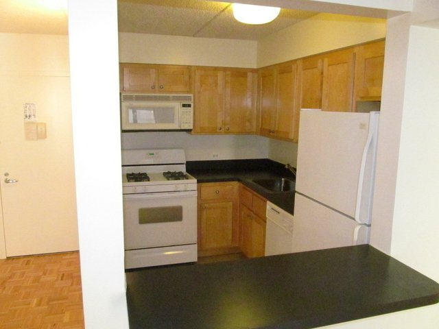 1BR at Rutgers Street - Photo 1