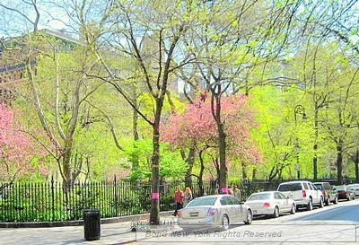 Studio, Gramercy Park Rental in NYC for $3,048 - Photo 1
