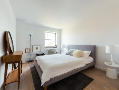 3 Bedrooms, Two Bridges Rental in NYC for $4,550 - Photo 2