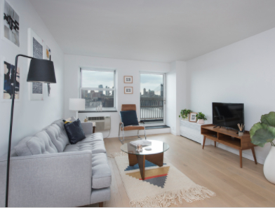 3 Bedrooms, Two Bridges Rental in NYC for $4,550 - Photo 1