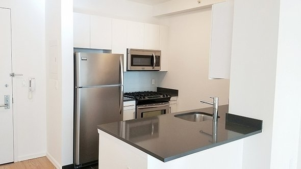Studio, Hunters Point Rental in NYC for $2,603 - Photo 2