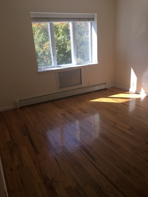 2 Bedrooms, South Slope Rental in NYC for $3,399 - Photo 1