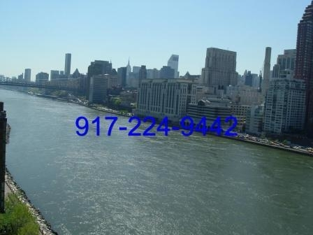 2 Bedrooms, Roosevelt Island Rental in NYC for $3,800 - Photo 2