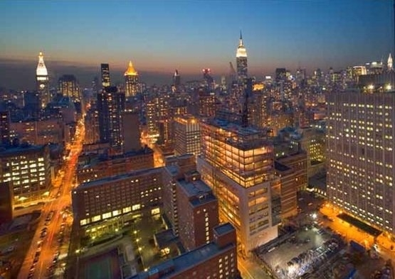 1 Bedroom, Kips Bay Rental in NYC for $4,145 - Photo 1