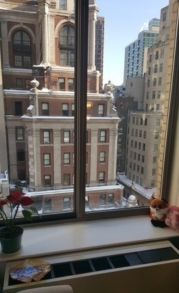 3 Bedrooms, Financial District Rental in NYC for $7,350 - Photo 1