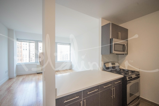 1 Bedroom, Financial District Rental in NYC for $3,700 - Photo 1