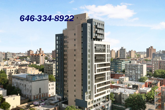 2 Bedrooms, Williamsburg Rental in NYC for $3,119 - Photo 1