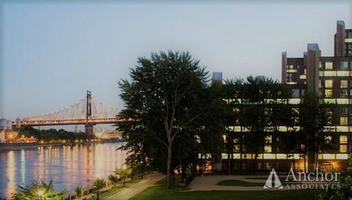 2 Bedrooms, Roosevelt Island Rental in NYC for $3,200 - Photo 2