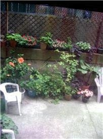 2 Bedrooms, Yorkville Rental in NYC for $2,999 - Photo 1