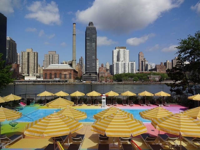 2 Bedrooms, Roosevelt Island Rental in NYC for $3,000 - Photo 2