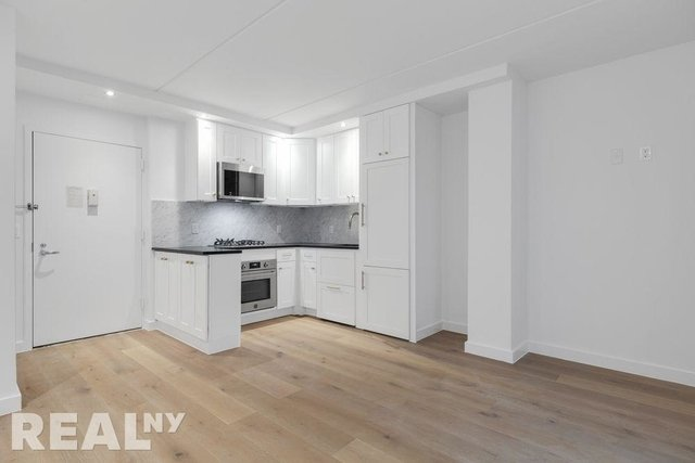 1 Bedroom, Two Bridges Rental in NYC for $3,463 - Photo 1