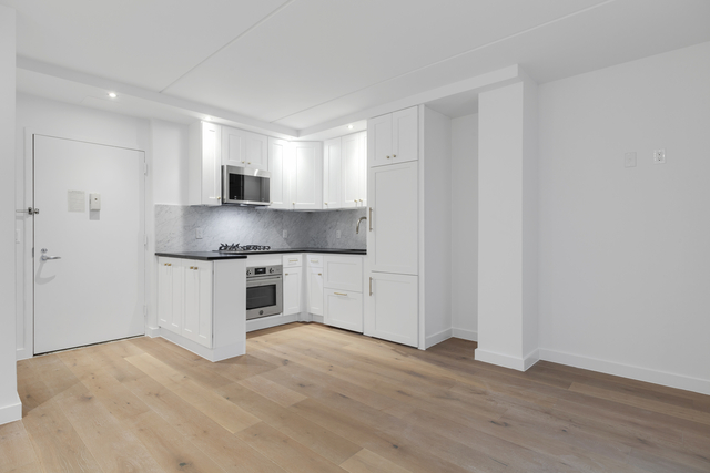 2 Bedrooms, Two Bridges Rental in NYC for $4,101 - Photo 1