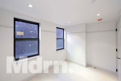 6 Bedrooms, East Village Rental in NYC for $10,000 - Photo 2