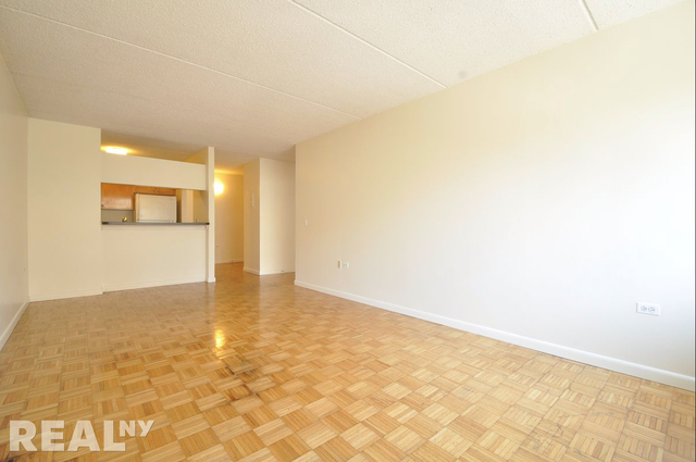 1 Bedroom, Two Bridges Rental in NYC for $3,150 - Photo 1