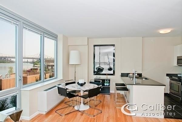 2 Bedrooms, Hunters Point Rental in NYC for $3,500 - Photo 1