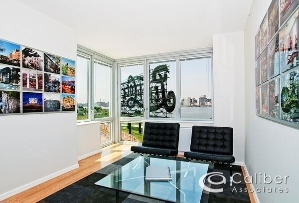 2 Bedrooms, Hunters Point Rental in NYC for $3,500 - Photo 2