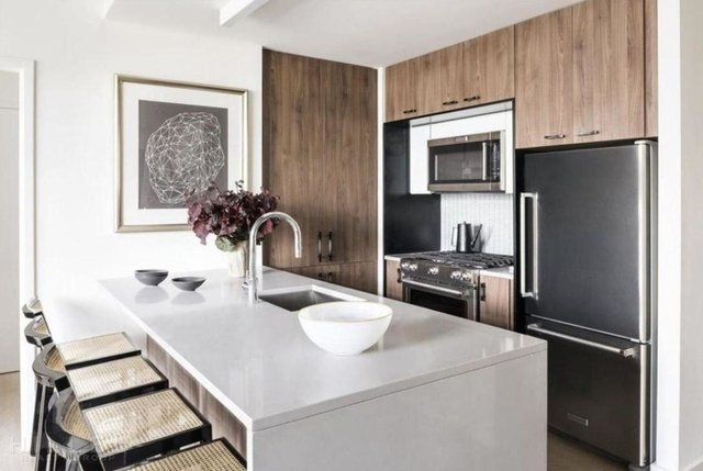 2 Bedrooms, Long Island City Rental in NYC for $3,906 - Photo 2