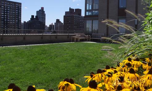 Studio, East Harlem Rental in NYC for $2,747 - Photo 1