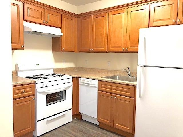1 Bedroom, Seaside Rental in NYC for $1,535 - Photo 1