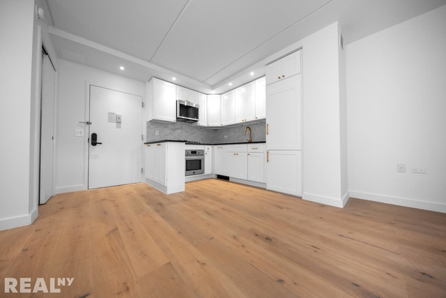 1 Bedroom, Two Bridges Rental in NYC for $3,523 - Photo 1