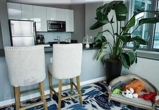 Studio, Hunters Point Rental in NYC for $2,382 - Photo 2