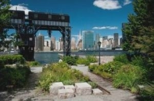 1 Bedroom, Hunters Point Rental in NYC for $3,035 - Photo 2
