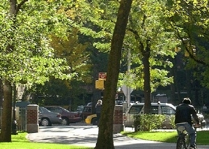 3 Bedrooms, Stuyvesant Town - Peter Cooper Village Rental in NYC for $6,186 - Photo 2