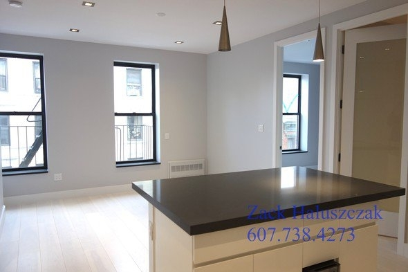 4 Bedrooms, Lower East Side Rental in NYC for $7,325 - Photo 2