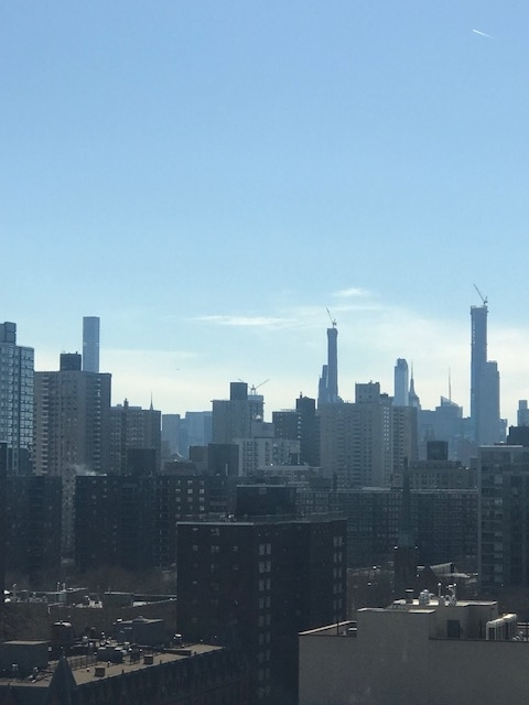 3 Bedrooms, Manhattan Valley Rental in NYC for $7,500 - Photo 2