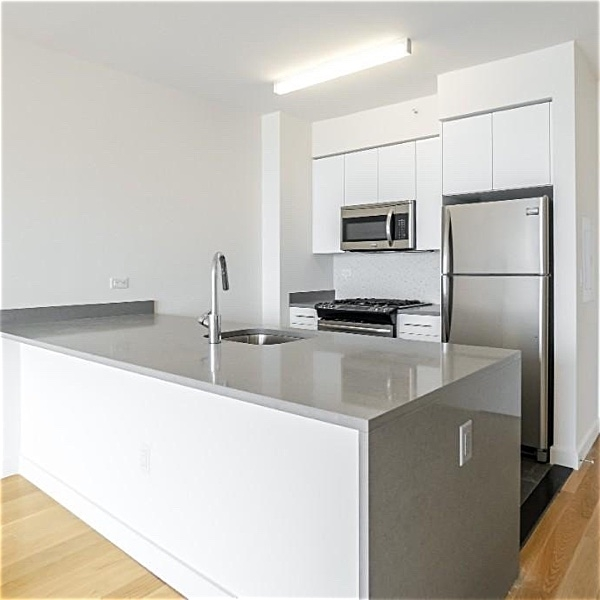 2 Bedrooms, Downtown Brooklyn Rental in NYC for $5,640 - Photo 1